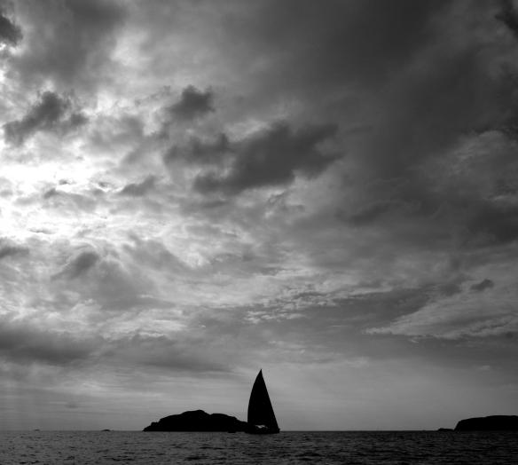 Svartvit segelbåt
